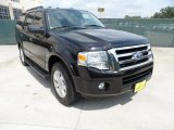 2010 Tuxedo Black Ford Expedition XLT #49657155