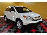 2008 Taffeta White Honda CR-V EX-L 4WD #49695256