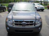 2011 Sterling Grey Metallic Ford Escape XLT V6 #49695175