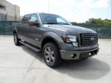 2011 Sterling Grey Metallic Ford F150 FX4 SuperCrew 4x4 #49748291
