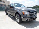 2011 Sterling Grey Metallic Ford F150 XLT SuperCrew #49748293