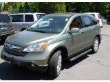 2008 Green Tea Metallic Honda CR-V EX-L 4WD #49799049