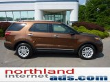 2011 Golden Bronze Metallic Ford Explorer XLT #49798995