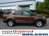 2011 Golden Bronze Metallic Ford Explorer XLT 4WD #49798996