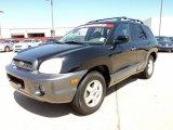 2003 Black Obsidian Hyundai Santa Fe LX #49856350