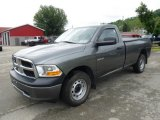 2010 Dodge Ram 1500 ST Regular Cab 4x4 Data, Info and Specs