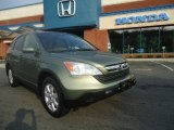 2008 Green Tea Metallic Honda CR-V EX-L 4WD #49937808