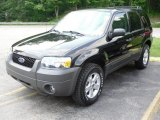 2006 Black Ford Escape XLT V6 4WD #49950234