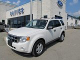 2009 White Suede Ford Escape XLT V6 4WD #49950371