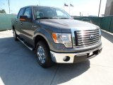 2011 Sterling Grey Metallic Ford F150 Texas Edition SuperCrew #49950384