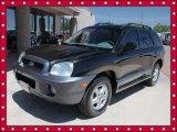 2003 Black Obsidian Hyundai Santa Fe GLS #49992170