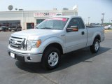 2010 Ingot Silver Metallic Ford F150 XL Regular Cab #50085978