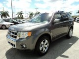 2010 Ford Escape Sterling Grey Metallic