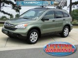 2009 Green Tea Metallic Honda CR-V EX #50086202