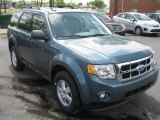 2010 Steel Blue Metallic Ford Escape Limited V6 #50085858