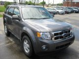 2011 Sterling Grey Metallic Ford Escape XLT 4WD #50085874