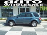 2010 Steel Blue Metallic Ford Escape Limited V6 #50085947