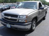 2003 Light Pewter Metallic Chevrolet Silverado 1500 Regular Cab #50230807