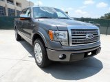 2011 Sterling Grey Metallic Ford F150 Platinum SuperCrew #50268230