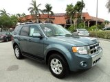 2010 Steel Blue Metallic Ford Escape Limited #50329512