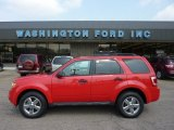 2009 Torch Red Ford Escape XLT 4WD #50380510