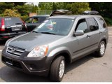 2006 Silver Moss Metallic Honda CR-V EX 4WD #50443313