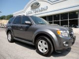 2011 Sterling Grey Metallic Ford Escape XLT V6 4WD #50466296