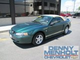 2002 Electric Green Metallic Ford Mustang V6 Convertible #50502111
