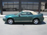 Electric Green Metallic Ford Mustang in 2002