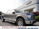 2011 Sterling Grey Metallic Ford F150 XLT SuperCrew 4x4 #50549457