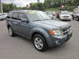 2010 Steel Blue Metallic Ford Escape XLT V6 4WD #50549959