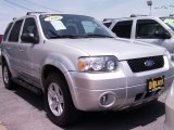 2006 Silver Metallic Ford Escape Hybrid 4WD #50600915