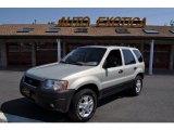 2003 Gold Ash Metallic Ford Escape XLT V6 4WD #50601388