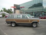 Jeep Grand Wagoneer 1988 Data, Info and Specs