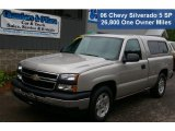2006 Silver Birch Metallic Chevrolet Silverado 1500 LS Regular Cab #50601024
