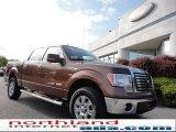 2011 Golden Bronze Metallic Ford F150 XLT SuperCrew 4x4 #50600886
