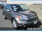 2009 Urban Titanium Metallic Honda CR-V EX-L 4WD #50690598