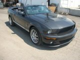 2008 Ford Mustang Alloy Metallic