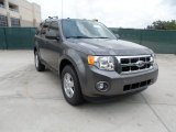 2011 Sterling Grey Metallic Ford Escape XLT #50768883