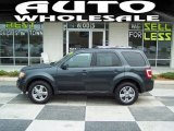 2009 Black Pearl Slate Metallic Ford Escape Limited #50870660