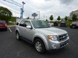 2009 Brilliant Silver Metallic Ford Escape Limited 4WD #50965348