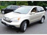 2008 Borrego Beige Metallic Honda CR-V EX-L 4WD #50965323