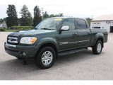 2005 Timberland Green Mica Toyota Tundra SR5 Double Cab 4x4 #50988752