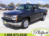 2005 Dark Gray Metallic Chevrolet Silverado 1500 Regular Cab #5089856