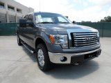 2011 Sterling Grey Metallic Ford F150 Texas Edition SuperCrew 4x4 #50998358