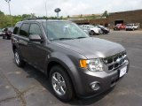 2011 Sterling Grey Metallic Ford Escape XLT V6 4WD #50998152