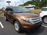 2011 Golden Bronze Metallic Ford Explorer XLT #50998154