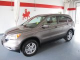 2010 Urban Titanium Metallic Honda CR-V EX-L #50997931