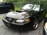 2003 Black Ford Mustang GT Coupe #50998448
