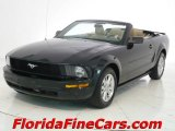 2007 Black Ford Mustang V6 Premium Convertible #5082462